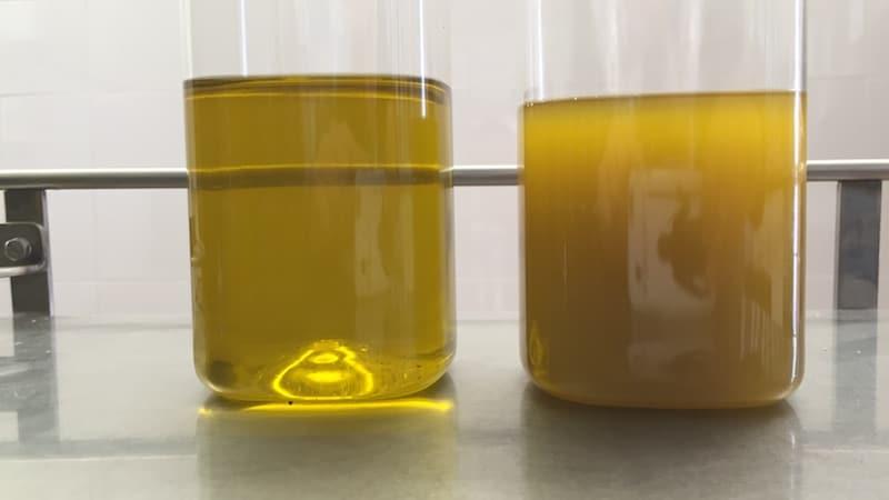 Aceite de oliva virgen extra: filtrado o sin filtrar?